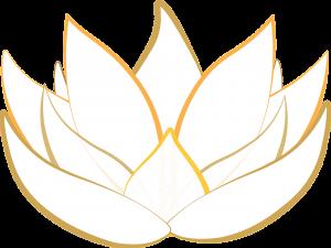 fleur lotus yoga senior