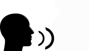 minivision vocalisation