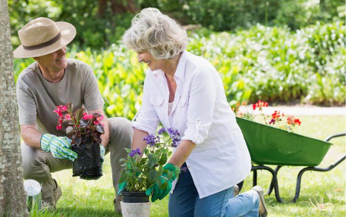 Senior jardinage - Bazile Telecom